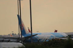 China Southern 787 Dreamliner (Intothevoid._) Tags: chinasouthern chinasouthernairlines boeing boeing787 boeingdreamliner dreamliner aircraft airliner civilaviation passengerairliner plane planes planespotting aeroplane airplane aviation