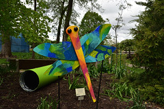 JIM_2945 (James J. Novotny) Tags: dragonflies sculptures sculpture d750 nikon rotarygarden rotarybotanicalgardens gardens garden gardenbotanical unlimitedphotos unlimiedphotos unlimited art artwork