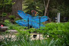JIM_2939 (James J. Novotny) Tags: dragonflies sculptures sculpture d750 nikon rotarygarden rotarybotanicalgardens gardens garden gardenbotanical unlimitedphotos unlimiedphotos unlimited art artwork