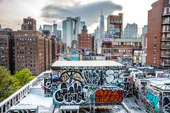 NY (jaime delgado rosas) Tags: ny newyork nueva york jaimedelgadorosas jaimedelgado jaimedelgadophotography street arte urban urbano