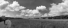 ╔╦╦╦╦╦╦╗ (Dominik Wesche) Tags: ruhrgebiet mülheim ruhr ruhrtalradweg autobahn a52 schwarzweis blackwhite natur himmel sky brücke bridge