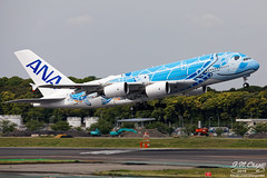 All Nippon Airways [NH][ANA] / JA381A / A380-841 / RJAA (starger64) Tags: canoneos5dmarkiv ef1004004556lisii rjaa nrt naritainternationalairport 成田国際空港 成田機場 allnipponairways ana 全日空 全日本空輸 ja381a a380841 a380 a388 a380800 aircraft airplane aviation arlines airbus nh9121