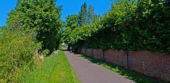 A walk around the cemetery - Gentbrugge Ghent (juliensart) Tags: lumix panasonic dmc lx7 wide 169 iso80 raw juliensart green groen natuur nature trail gentbrugge ghent gent flanders leica summilux vario schelde muur wall baksteen brick nocopy