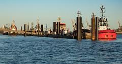 Hamburg, Germany (tomst.photography) Tags: elbe hamburg germany germania amburgo tomst river ships ship bluesky