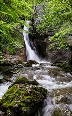 Wasser (robert.pechmann) Tags: wasserfall rinnerbergerbach micheldorf oberschlierbach leonstein oberösterreich steyrtal robert pechmann water outdoor bach nature