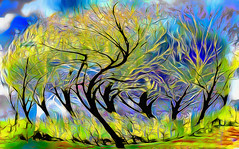 Twisted Tree ReTwisted (Rusty Russ) Tags: twist tree image rework green swirl distort black colorful day digital window flickr country bright happy colour eos scenic america world sunset beach water sky red nature blue white art light sun cloud park landscape summer city yellow people old new photoshop google bing yahoo stumbleupon getty national geographic creative composite manipulation hue pinterest blog twitter comons wiki pixel artistic topaz filter on1 sunshine reddit tinder russ seidel facebook timber unique unusual fascinating
