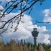 Puijo näkymä tornille kevät 2019