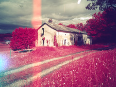 img005 (pierremartial) Tags: shootfilmnotbullets shootfilmnotmegapixels filmisnotdead ishootfilm film france périgord dordogne countryside country campagne 6x45 645 middleformat moyenformat middle format moyen 45mm ga645w wide ga645 fujifilm fuji infrarouge rouge infrared red infra kodakaerochrome aerochrome400 aerochrome kodak