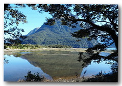 Serenity. (natureflower photography) Tags: serenity fiordlandnationalpark southisland newzealand reflection mountains trees mirror blue