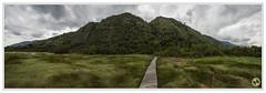 Similiki National Park - Uganda (Crested Aperture Photography) Tags: similikinationalpark uganda ugandawildlifeauthority eastafrica landscape nikond810 nikon