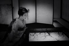 Maiko_20190409_121_2 (Maiko & Geiko) Tags: 20190409 myokenji temple kanohisa kyoto maiko 舞妓 妙顕寺 叶久 京都 叶家 kanoya ksumika