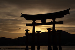Itsukushima Floating Torii Silhouette - Miyajima Island (Japan) (Andrea Moscato) Tags: andreamoscato giappone japan asia japanese 日本 nihon nippon asian light luce shadow ombre prefecture attraction site national nature natura natural naturale landscape paesaggio sky cielo view vivid vista scenic history historic ancient treasure wood art architecture monument brilliant water silhouette sea seascape seashore beach torii gate bay hiroshima unesco world heritage island seto inland setonaikai reflection tide sunset dusk orange red yellow evening sun dark wave clouds nuvole mountain bird black