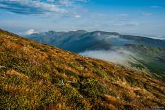 Chornohora moutain chain / Чорногірський хребет (Kochum) Tags: nikon d90 nikkor1870 1870 mountains carpathians carpathian clouds nature природа горы карпаты карпати облака