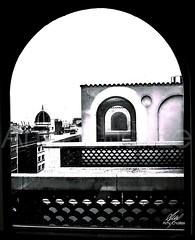 Shadow of the windows (Amy Charlize) Tags: amycharlize focosocial windows shapes blackandwhite photography fotografia barcelona city daily future inspiration urban