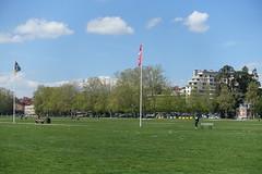 Lawn @ Pâquier @ Annecy (*_*) Tags: may 2019 printemps spring morning matin europe france hautesavoie 74 annecy savoie city pâquier park lawn pelouse
