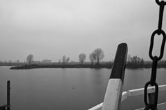Misty Morning In Noord-Brabant (RadarO´Reilly) Tags: landschaft landscape dunst mist heusden noordbrabant nl niederlande nederland netherlands wasser water sw bw blanconegro monochrome noiretblanc zwartwit
