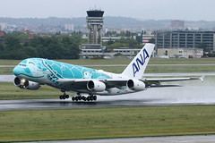 Airbus A380-841 - ANA - JA381A - s/n 263 - Flying Honu - Kai (French Frogs Pix ✈) Tags: avion aircraft plane airplane aviation airliner airbus a380 ana ja382a tortue turtle rollsroyce trent trent900 honu flyinghonu kai staralliance décollage takeoff