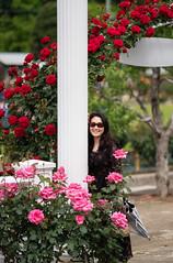 Yuri at Ikuta Ryokuchi Rose Garden (Big Ben in Japan) Tags: yuri ikutaryokuchirosegarden kawasaki rose tokyo
