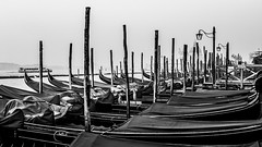 Armada of Gondolas (Blende1.8) Tags: gondel gondeln gondola gondolas boot boote boat boats venice venezia venedig italy italia italien mist misty mood moody water wasser canal kanal outdoor menschenleer pfähle holzpfähle timberpile woodenstake woodenstakes stakes