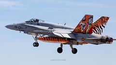 Los F-18 del Ala 15 parten hacia el Tiger Meet (Ejército del Aire Ministerio de Defensa España) Tags: despegue takeoff vuelo flight tigre f18 mcdonnelldouglasf18hornet hornet ala15 ntm ntm19 ntm2019 nato tiger meet baseaérea zaragoza airbase cielo sky azul blue ejércitodelaire fuerzaaérea españa avión plane caza fighter airforce pilot jet
