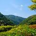 Kyoto scenery