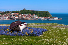 Scarborough (Derwisz) Tags: scarborough scarboroughharbour southbay bay sea seascape seaside landscape boat town castle cliff hill nothyorkshire england unitedkingdom uk canoneos40d spring