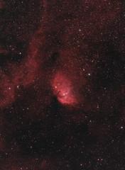The Tulip Nebula (AstroBackyard) Tags: astrophotography astronomy tulip nebula sharpless 101 sh2101 emission h ii oiii ha narrowband skywatcher esprit 100 ed apo refractor oneshotcolor camera space stars cosmos universe cygnus x1 constellation asi294