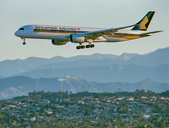 A Singapore Airlines Airbus A350 on short final for the north complex at LAX on an early morning back on March 17. (beltz6) Tags: 9vsgf singapore lax klax singaporeairlines analog film hollywood laderaheights hollywoodsign aviation avgeek airplane airbus airbusa350 flying losangeles nikon nikonf6