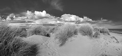 Camargue 2019-20190520 176 (Hatuey Photographies) Tags: gard france tourisme dunes hatueyphotographies languedocroussillon camargue bw nb sand beach plage samsung note8 galaxynote8
