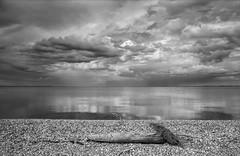 (nadiaorioliphoto) Tags: wb bw biancoenero landscape spiaggia lagoon