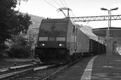stresa #10 (train_spotting) Tags: stresa lineadelsempione dbcargoitaliasrl lenord ferrovienordmilano nordcargo traxxf140dc e4831075nc bombardier nikond7100