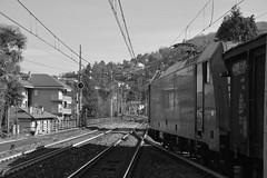 stresa #11 (train_spotting) Tags: stresa lineadelsempione dbcargoitaliasrl lenord ferrovienordmilano nordcargo traxxf140dc e4831075nc bombardier nikond7100