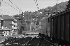 stresa #12 (train_spotting) Tags: stresa lineadelsempione dbcargoitaliasrl lenord ferrovienordmilano nordcargo traxxf140dc e4831075nc bombardier nikond7100