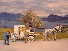 Gray dapple wedding carriage (cosmosminimus, dioramas 1:87 (H0)) Tags: weddingcarriage graydapple apfelschimmel hochzeitskutsche carrodelaboda dapplegris preiser h0 187 diorama model modell modelo