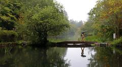 (cherco) Tags: woman autumn colours nagano japan japon umbrella water lake cross bridge reflexions trees landscape canoneos5diii canon rain alone lonely solitary happyplanet asiafavorites