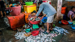 2019 - Cambodia - Sihanoukville - Phsar Leu Market - 12 of 25 (Ted's photos - Returns late November) Tags: 2019 cambodia cropped nikon nikond750 nikonfx tedmcgrath tedsphotos vignetting fish people baskets phsarleumarket phsarleumarketsihanoukville sihanoukvillephsarleumarket sihanoukvillecambodia uppermarket sihanoukvilleuppermarket uppermarketsihanoukville sihanoukville scale weighscale weighing fishmonger