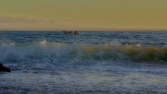 Alvorada (Lucia Cysneiros) Tags: brasil pernambuco praia beach praiadoxareu