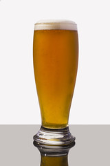 Adnams Southwold - Mosaic Pale Ale (Alvimann) Tags: alvimann adnamssouthwoldmosaicpaleale adnamsmosaicpaleale mosaicpaleale adnamssouthwold adnams southwold mosaic pale ale suffolk inglaterra inglesa ingles england englander english blondebeer cervezarubia cervezapaleale cervezainglesa englishbeer englishpalealebeer palealebeer paleale beer cerveza blonde rubia industrial bebe bebida beber beverage beers alimento taste tastes sabor sabores drink drinking montevideouruguay montevideo bottle botella fotografia producto fotografiadeproducto productphotography product photography photo foto marca marketing brand branding label labels etiqueta etiquetas drop drops gota gotas chill chilled frio fria