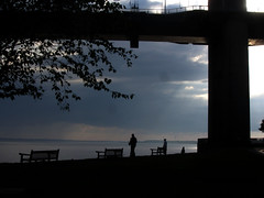 Under the bridge (shaggy359) Tags: humber kingston upon hull hessle foreshore river road suspension water people person silhoutte walk walking contemplate contemplating tree bench benches horizon evening bridge yorkshire yorks humberside