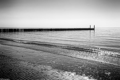 groyne (fhenkemeyer) Tags: sea sky sun beach zeeland westkapelle netherlands seascape groynes