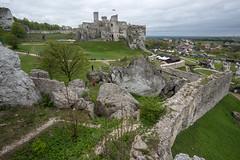 Podzamcze (piotr_szymanek) Tags: landscape outdoor green forest tree ruins rocks wall 1k 20f