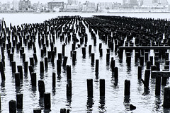Pilings--Hoboken Piers (PAJ880) Tags: pilings abandoned piers hoboken ny husdon river manhattan shore new jersey waterfront bw mono
