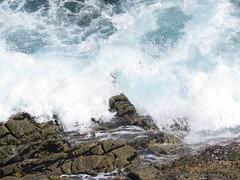 IMG_8757 (jesust793) Tags: mar olas rocas sea waves rocks