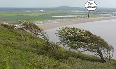 Brean (andreboeni) Tags: brean sands down tree trees beach somerset caravan park site