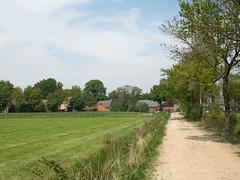 Lieveren (Jeroen Hillenga) Tags: drenthe dorp zandweg zandpad village landscape landschap netherlands nederland