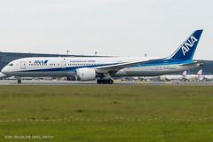 B789_NH206 (VIE-HND)_JA875A_3 (VIE-Spotter) Tags: vie vienna airport flughafen wien flugzeug loww planespotting airplane