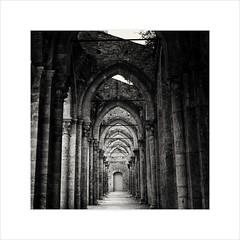 Abby of San Galgano (Maximilian Busl) Tags: italy tuscany toscana san galgano siena abby monastery ruin blackandwhite film hasselblad 503cx ilford