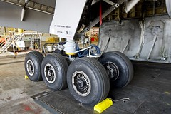 United Airlines Boeing 777-200 right main landing gear. San Francisco Airport 2019. (17crossfeed) Tags: unitedairlines unitedexpress boeing 777 777200 landinggear sfo sanfranciscoairport maintenance 17crossfeed claytoneddy airport aviation aircraft airplane