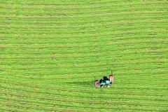 Almost Done (Aerial Photography) Tags: by obb wm 12052008 1ds06709 ackerbau bauernmalerei bavaria bayern bernriedamstarnbergersee deutschland farbe fotoklausleidorfwwwleidorfde fotoklausleidorfwwwleidorfaerialcom germany grafik gras grün johndeere landscapeandnature landschaft landschaftnatur landwirtschaft linien luftaufnahme luftbild p1 reihen rot traktor wiese aerial agriculture color colour farmerspainting graphicart graphics grass grassland green hayfield landscape landscapenature lines meadow nature outdoor red rows tractor verde bernriedlkrweilheimschongau bayernbavaria deutschlandgermany
