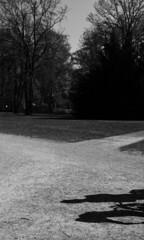 (eelend) Tags: black white berlin potsdam park sunlight spring shadows trees crossroad